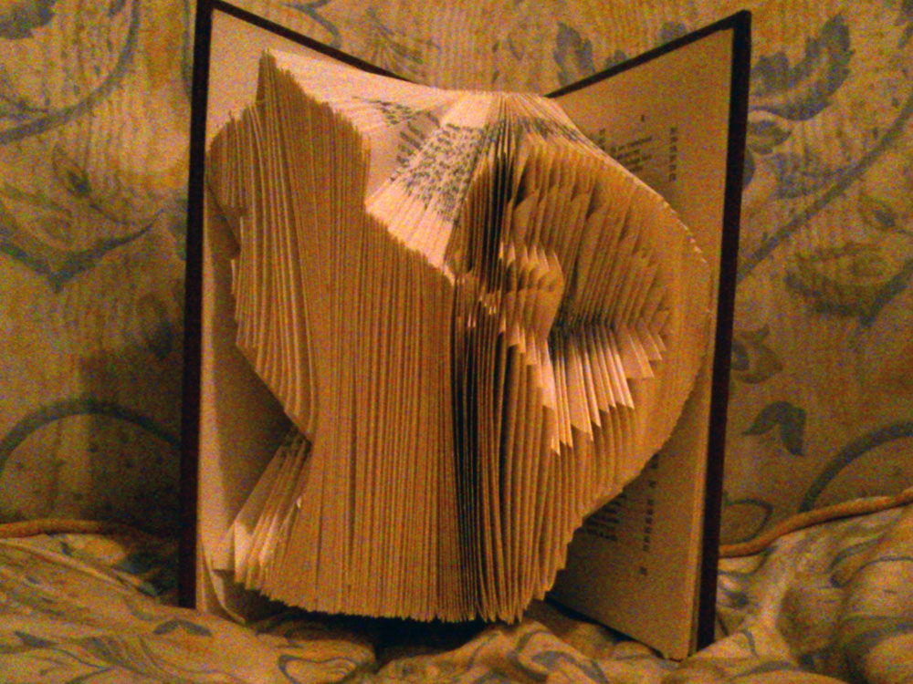 """Cat"" folded book pattern"