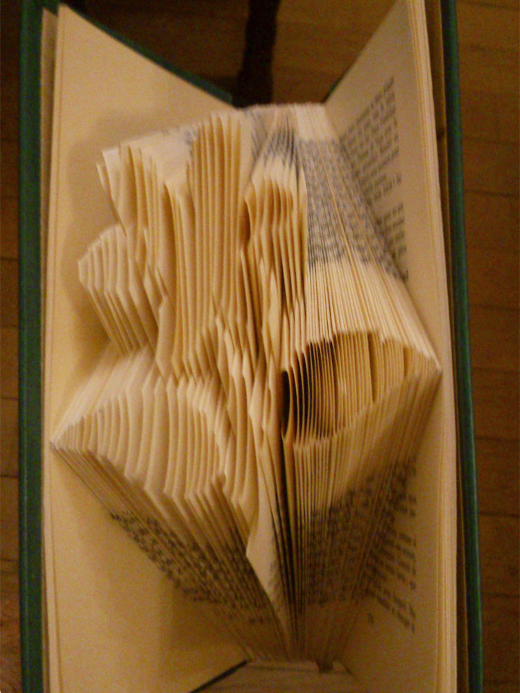 """Flower"" folded book pattern"