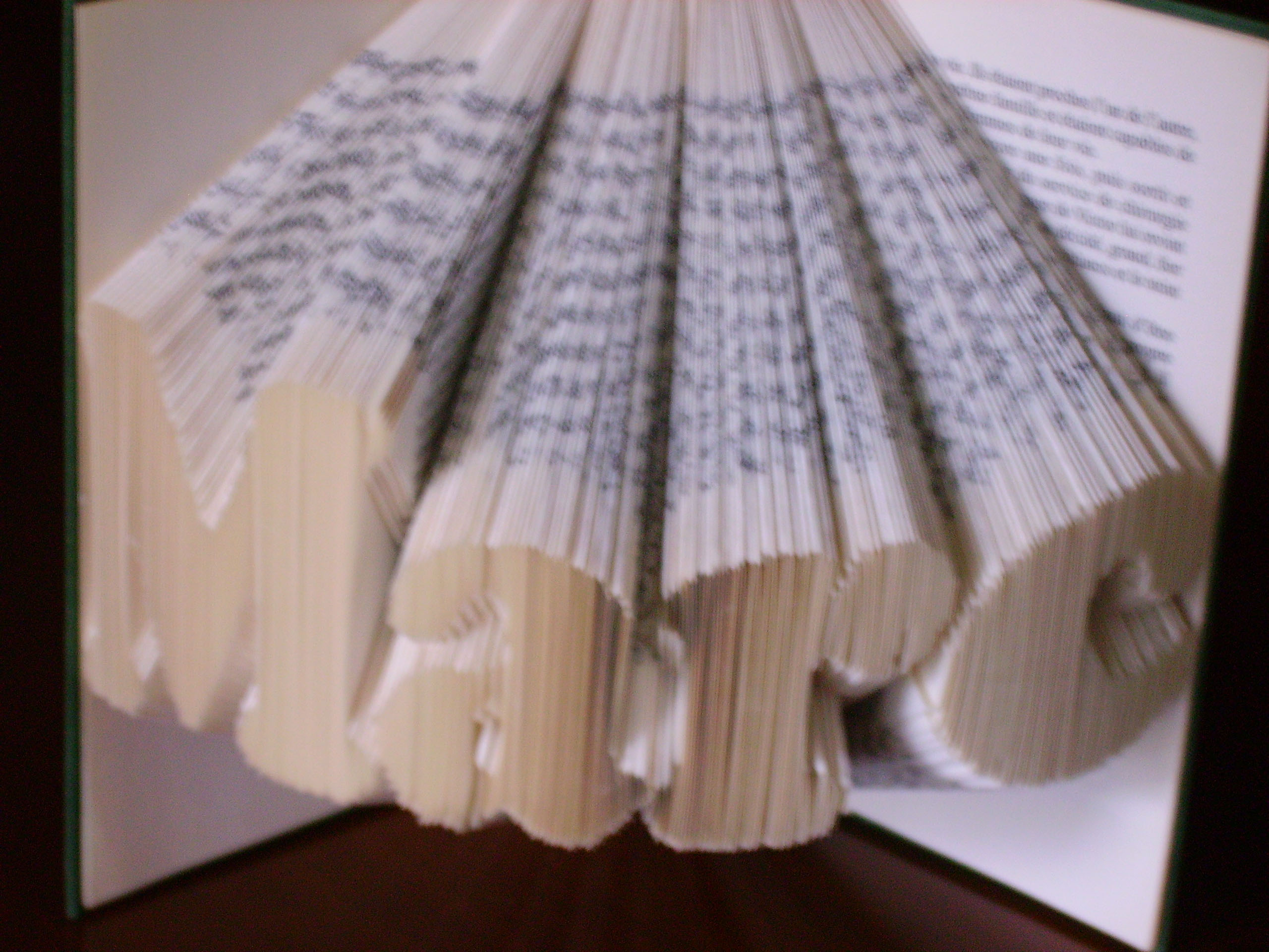 """Marc"" folded book pattern"