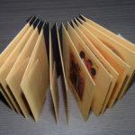 Livre Souvenir 06