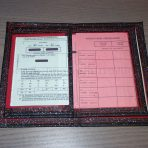 Another auto document holder
