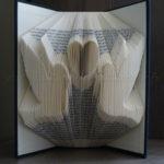 livre-plie-oiseaux-amoureux