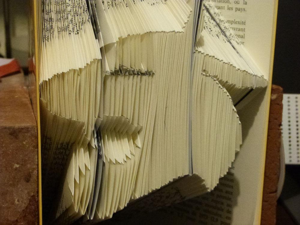 Tiger head folded book pattern